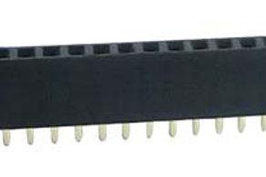 Burg strip female 40 pin