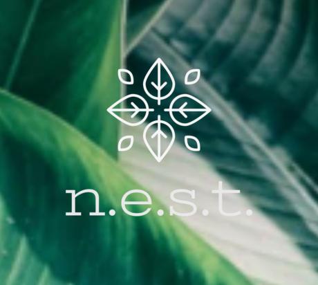 N.E.S.T Earth