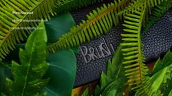 BRUSH PYTHON LOOK BOOK-32