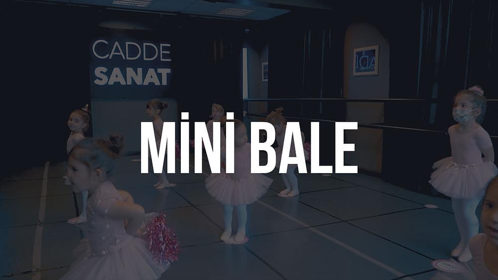 mini bale