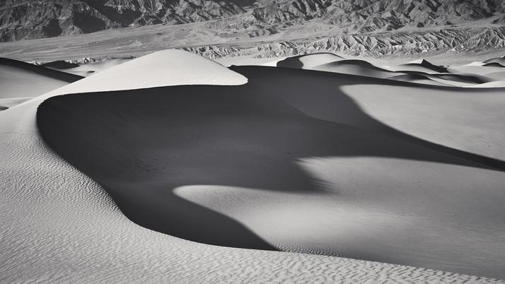 Dune Study #3