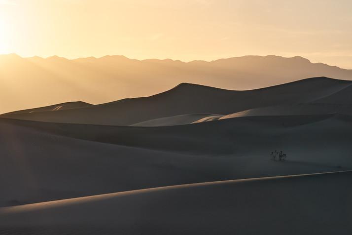 Dune Study #4