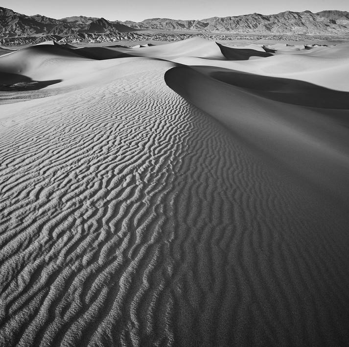 Dune Study #2