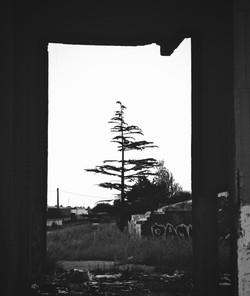 ©bigotemyfriend