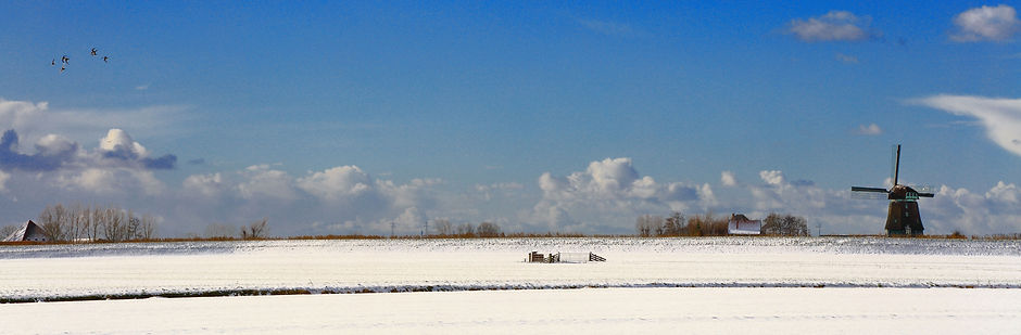 Snow in Schermer Polder