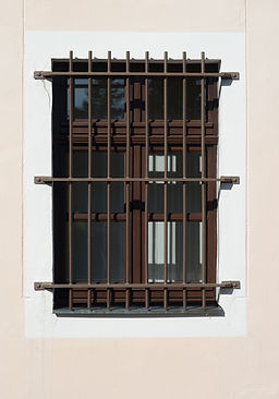bars on a window.jpg