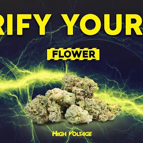 High Voltage Flower.jpg