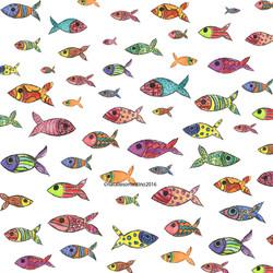 Summer Fish