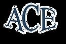 Ace Enterprises