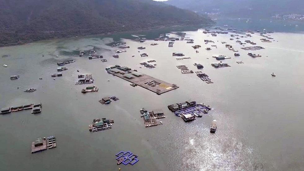 Hong Kong Aquaculture 1r.jpg