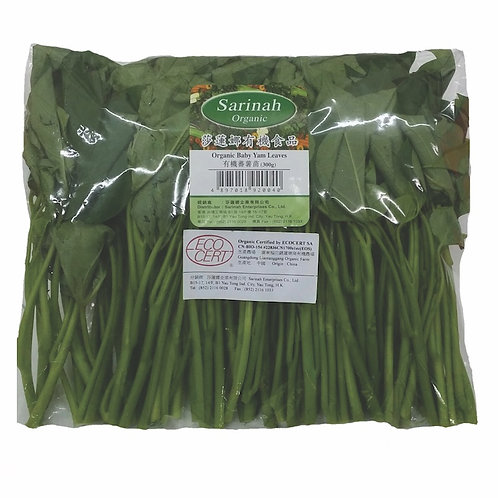 SARINAH 莎蓮娜 有機蕃薯苗 | Organic Baby Yam Leaves