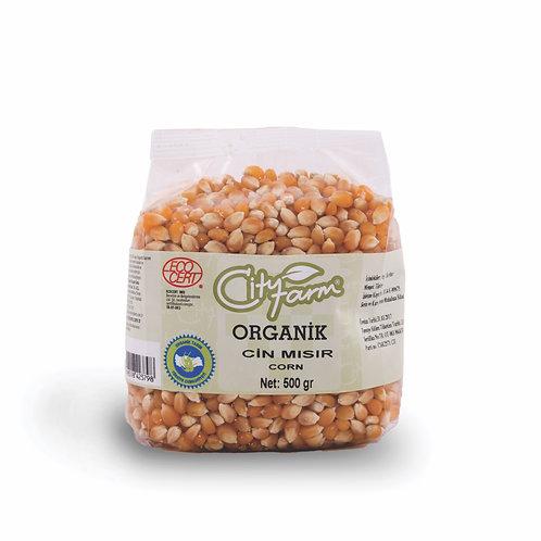 CITY FARM 有機玉米粒 | Organic Corn