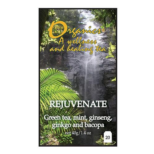 KOALA TEA Rejuvenate Organic Tea