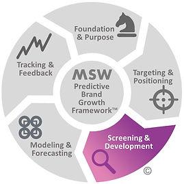 MSW Brand Growth Framework S&D.jpg