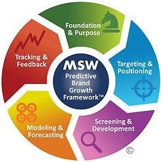 MSW Brand Growth Framework Whole.jpg