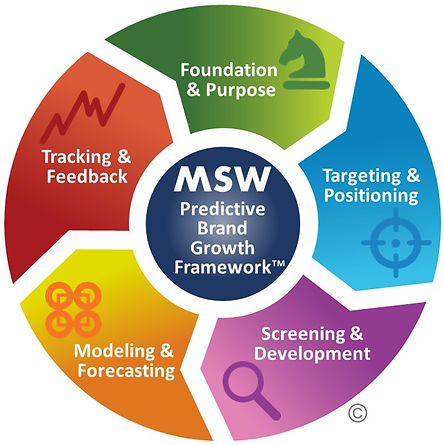 MSW Brand Growth Framework Whole.jpg
