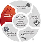 MSW Brand Growth Framework T&F.jpg