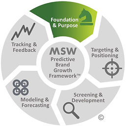MSW Brand Growth Framework F&P.jpg