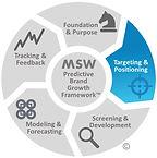 MSW Brand Growth Framework T&P.jpg