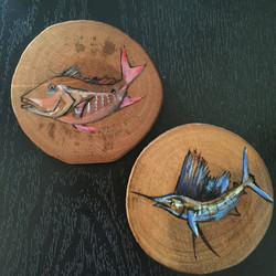 Saltwater Coasters