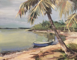 Florida Landscape Study