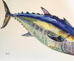 Jupiter Blackfin