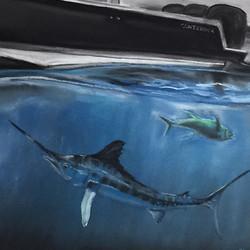 Contender Portrait with Marlin/Tuna
