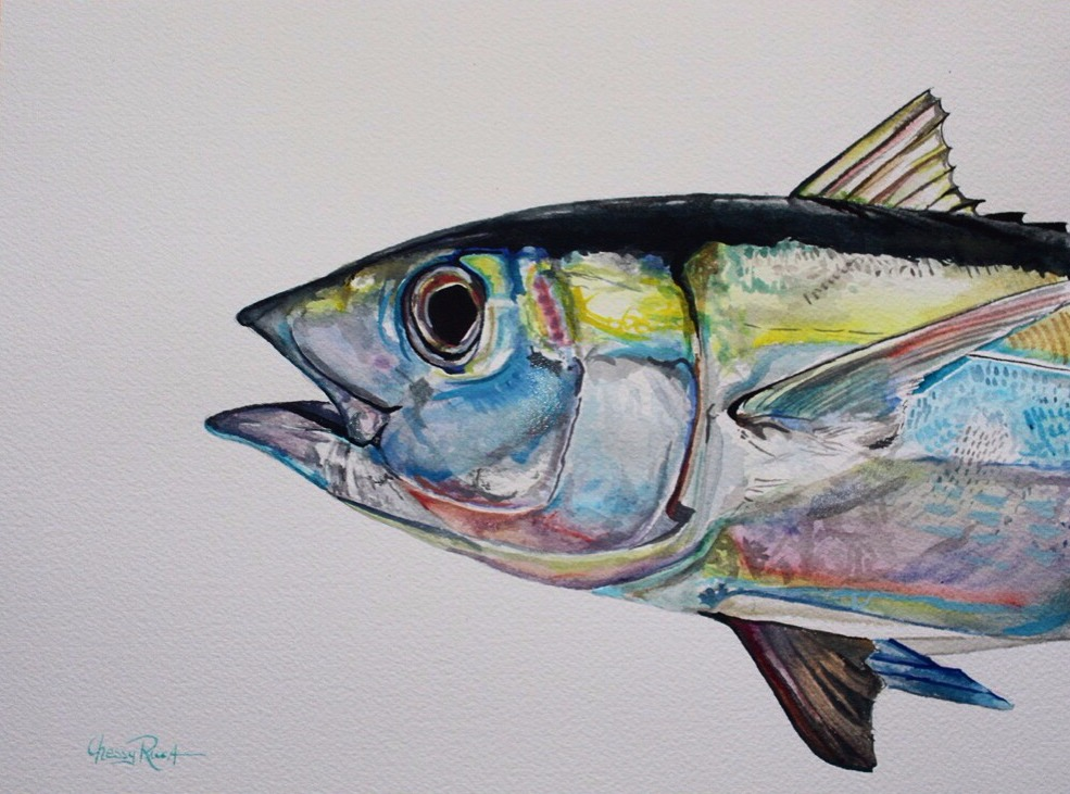 Jupiter Blackfin Color Study