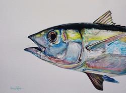 Jupiter Blackfin Color Study