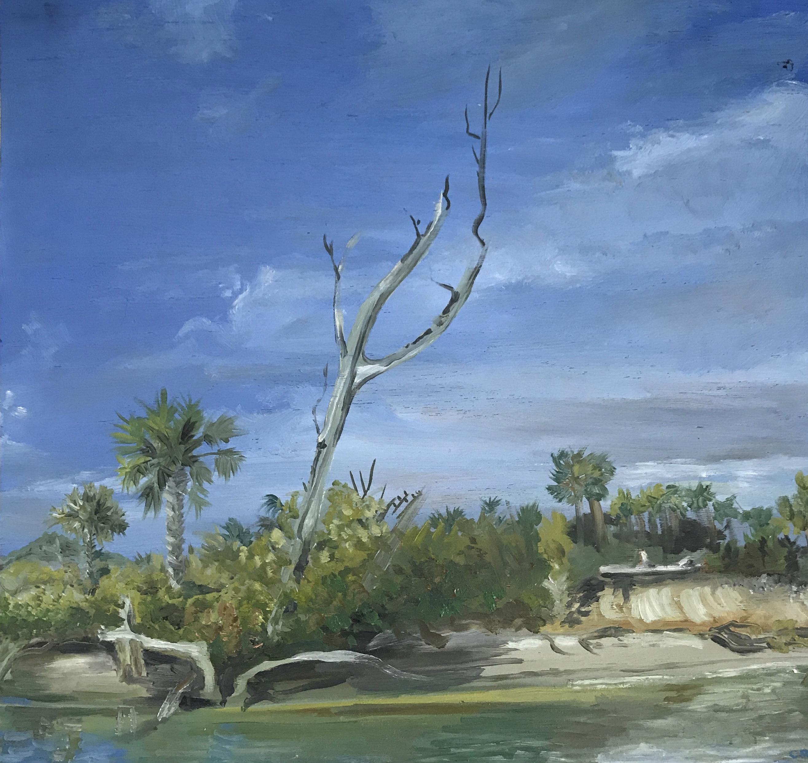 Jupiter Lighthouse Island