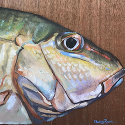 Mutton Snapper on Wood