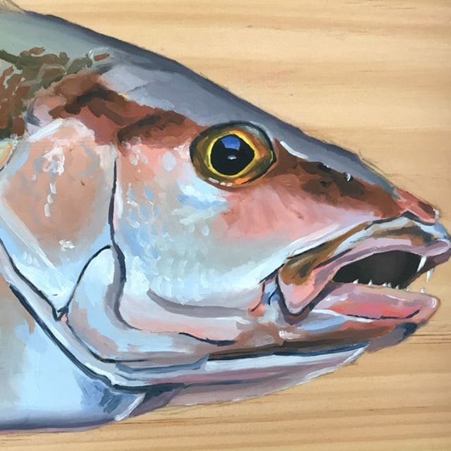 Mangrove Snapper on Wood