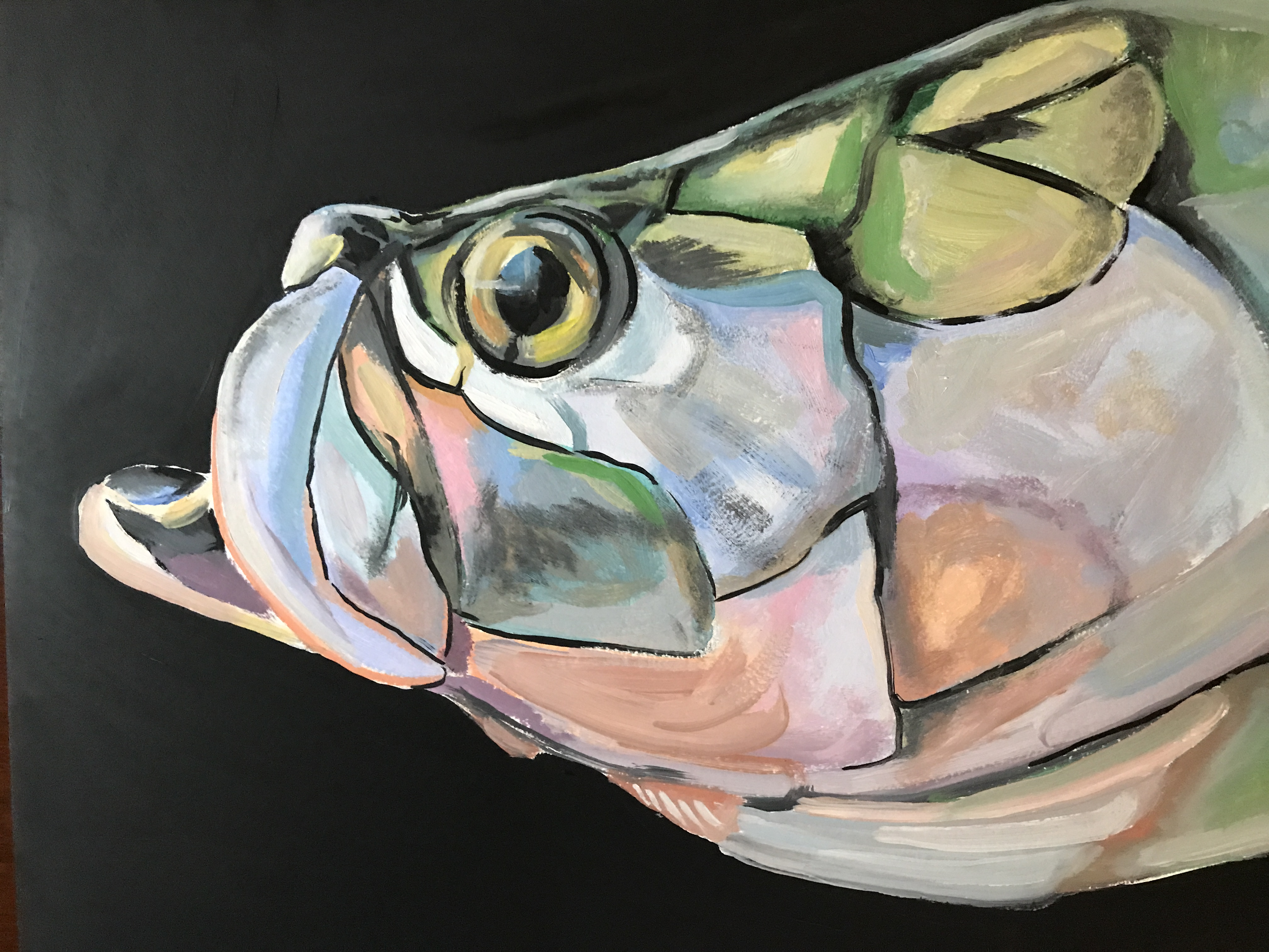 Tarpon Study on Panel