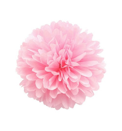 Pompon rosa.jpg