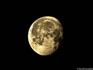 7.45 am December Moon