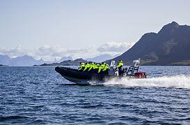 lofoten-islands-rib-safari-winter-holida