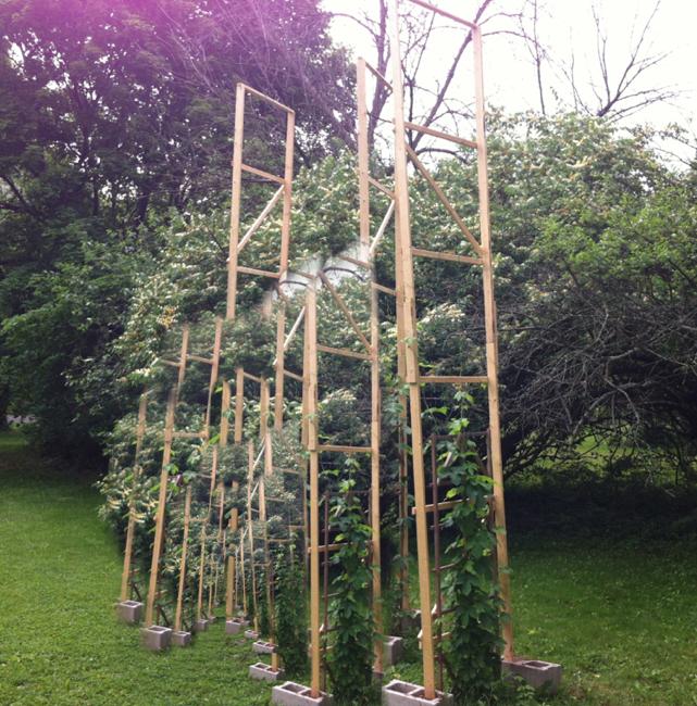 Backyard Configuration 7