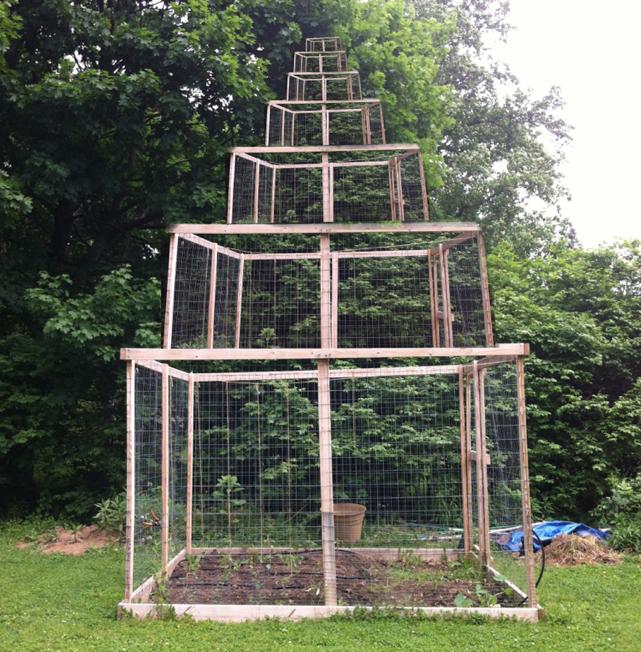 Backyard Configuration 4
