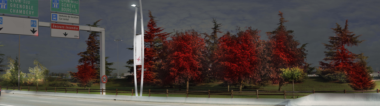 Voirie et arbres _ MEV
