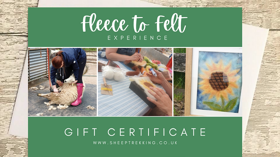 Fleece to Felt Experience - Gift Voucher