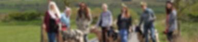 Walk a sheep in the Brecon Beacons, Hen party