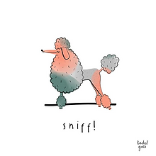 SNIFF ILLUSTRATION .png