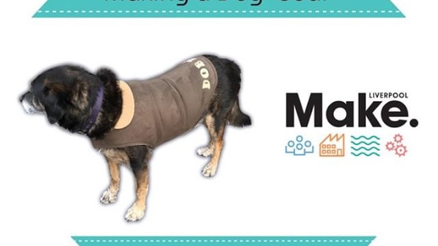 Introduction to Sewing : Making a Dog Coat
