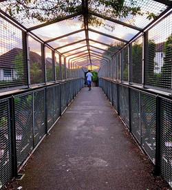 Finchley walk