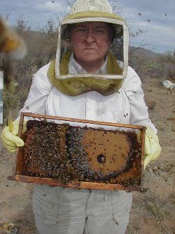 Arizona Rangeland Honey