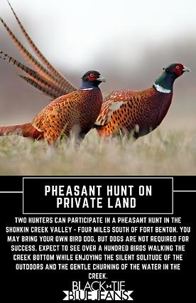 Pheasant Hunting.png