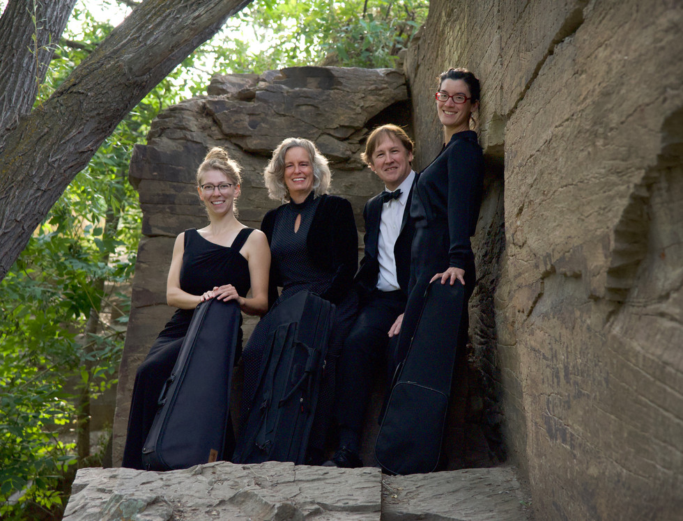 3972 Cascade Quartet Rock Ledge.jpg
