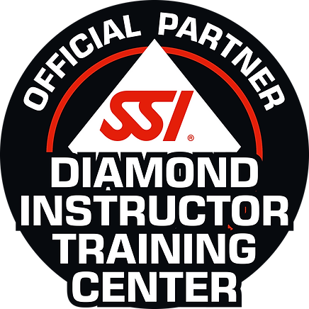 SSI_LOGO_Diamond_Inst_Tr_Center (1).png