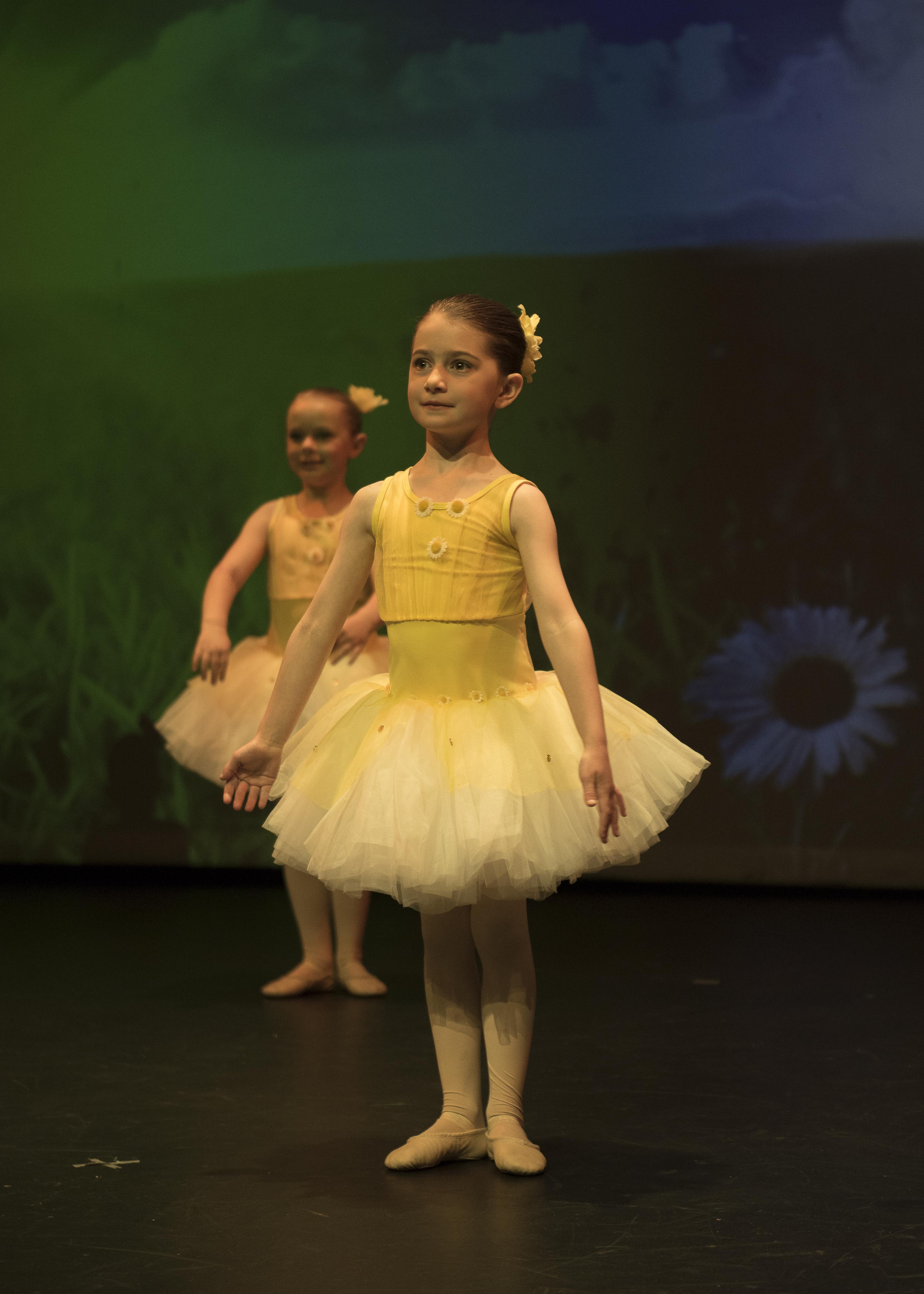 Primary Ballet Concert 2018