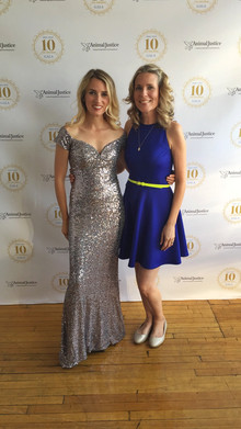 Animal Justice's Fundraising Gala with Executive Director Camille Labchuk